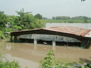 Banjir Citarum Rumambe, Klari, Karawang