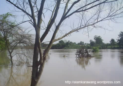 Banjir Citarum,alam karawang